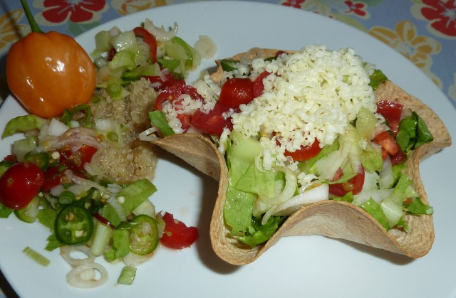 Summer quinoa, tomato and endive tortilla bowl salad