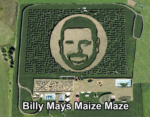 Billy Mays Maize Maze