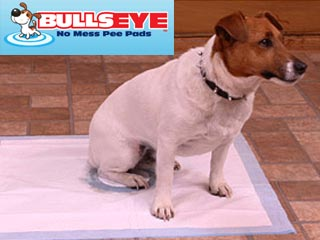 Bullseye Pee Pads for Dogs and Puppies