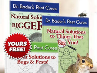 Natural Solutions to Things That Bug You!